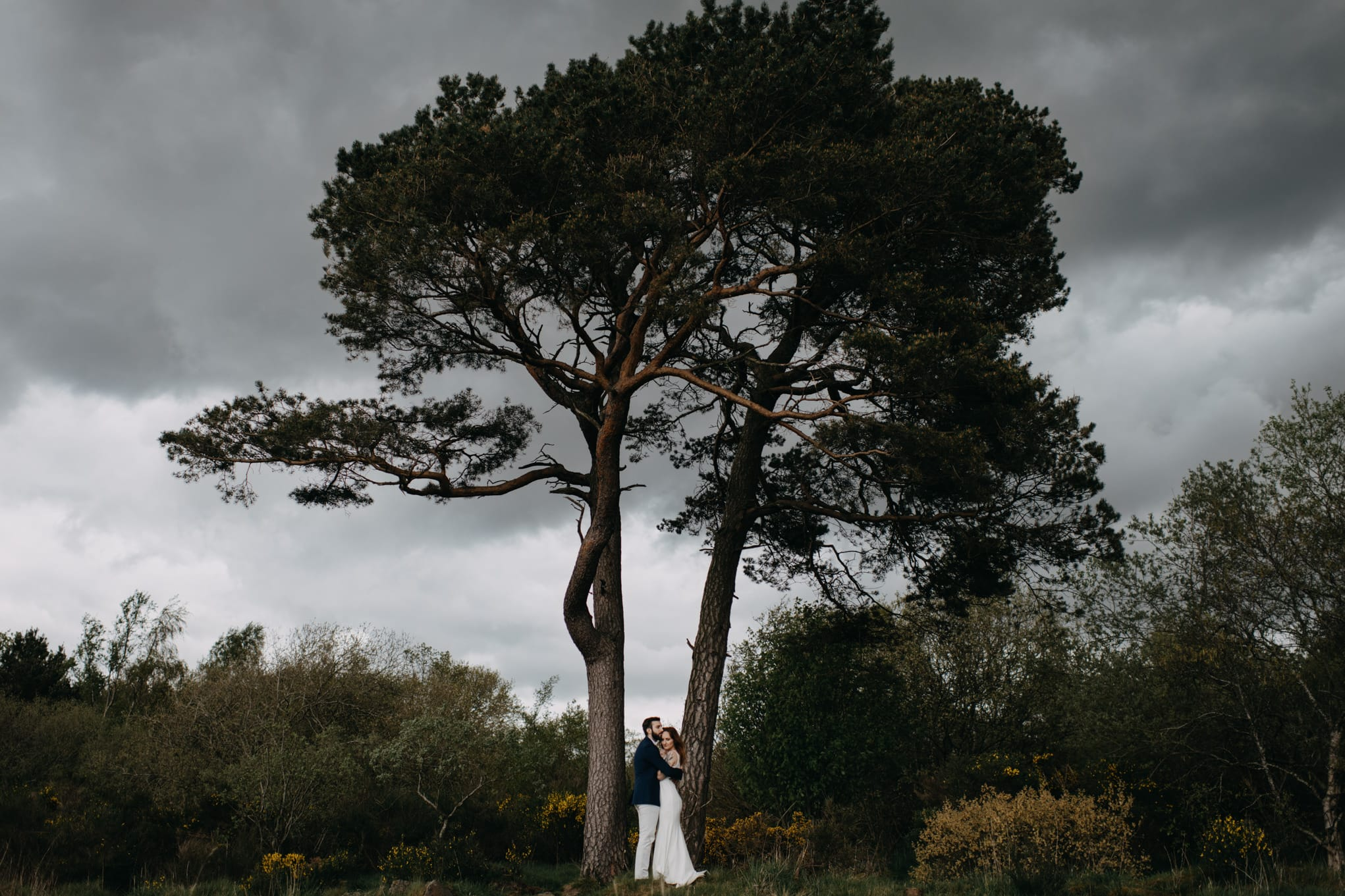 Elopement in nature Scotland. Stormy tree shot with Lena Sabala and Patrick Zaarour on Mark Pacura workshop.