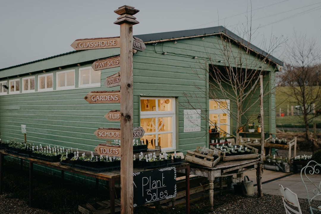 Herbs at greenhouse venue for small wedding in Scotland - Secret Herb Garden