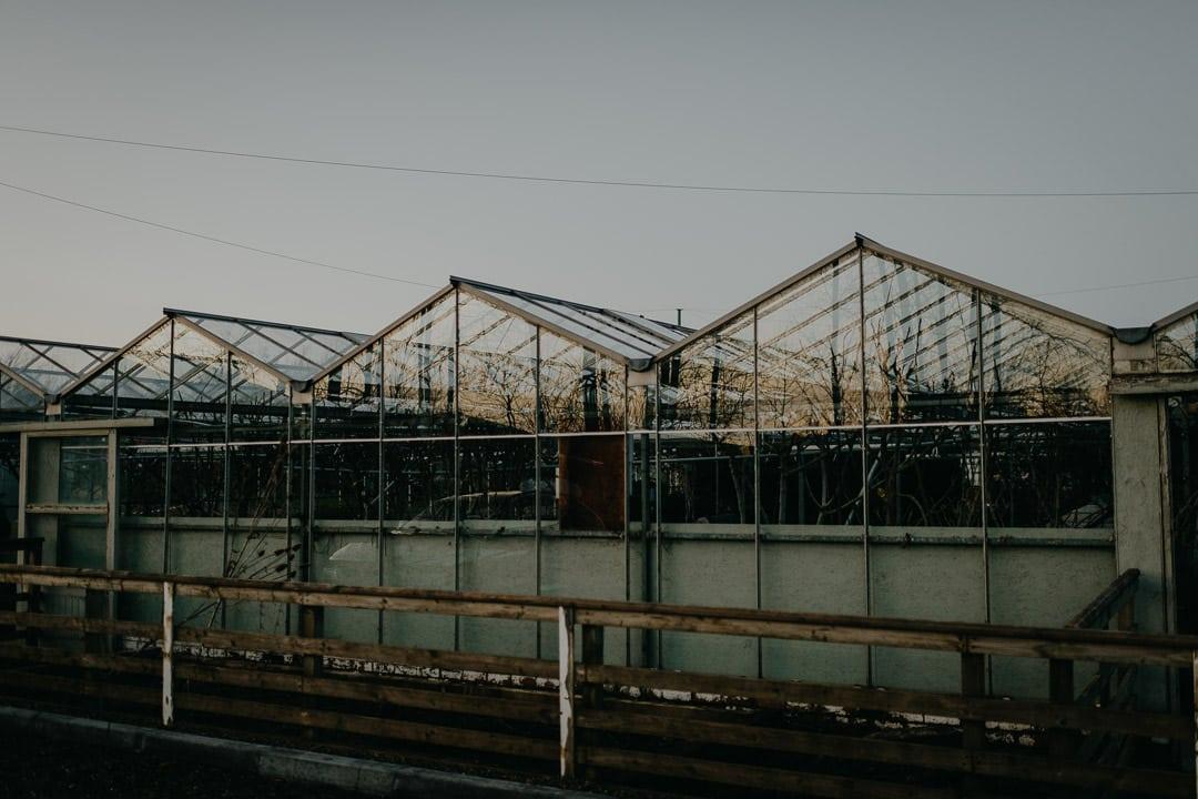 Greenhouse venue for small wedding in Scotland
