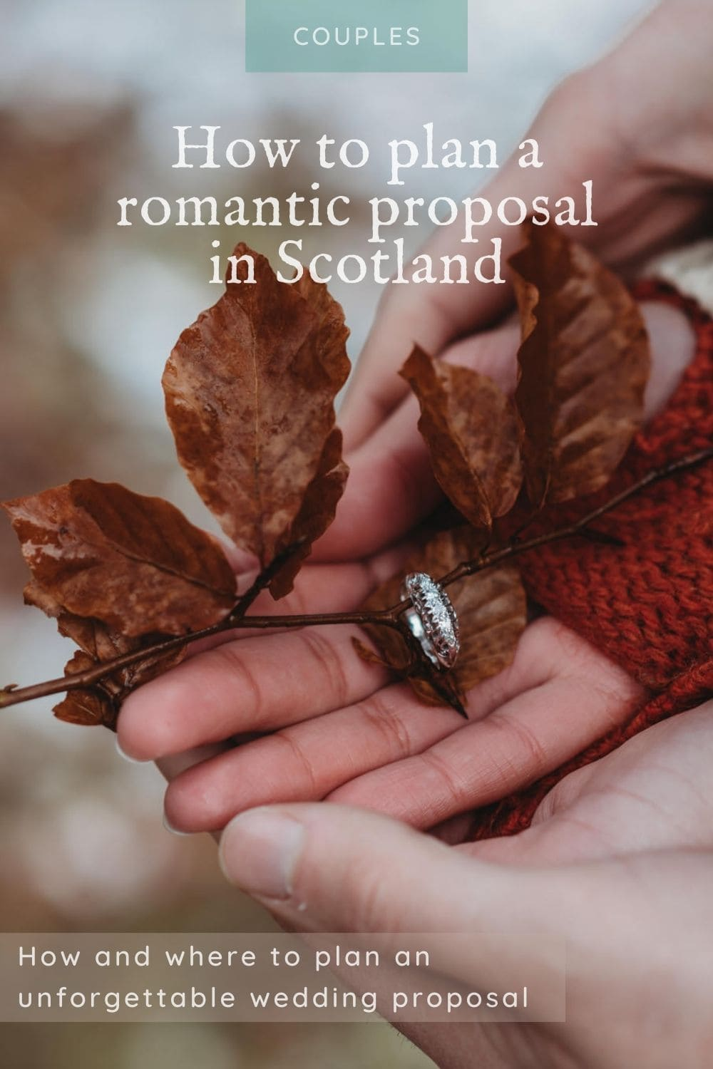 Planning a proposal in Scotland